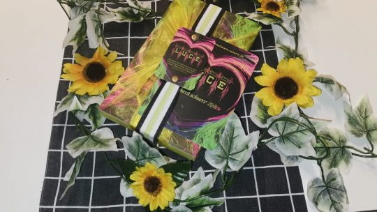Luce – Liebe durch schwere Zeiten von Doreen Hallmann